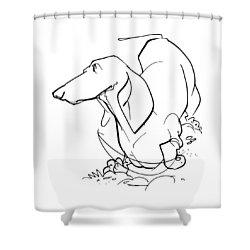 Dachshund Gesture Sketch Shower Curtain