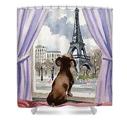 Dachshund In Paris Shower Curtain