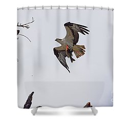Dad Brought Supper Shower Curtain