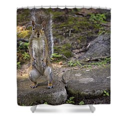 Daddy Jr Shower Curtain