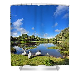 Dafen Pond Shower Curtain
