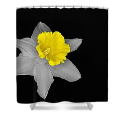 Daffo The Dilly Isolation Shower Curtain