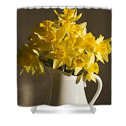 Daffodil Filled Jug Shower Curtain by Sandra Foster