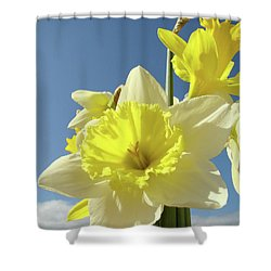 Daffodil Flowers Artwork Floral Photography Spring Flower Art Prints Shower Curtain by Baslee Troutman