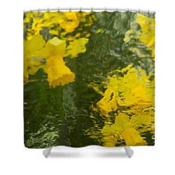 Shower Curtain featuring the photograph Daffodil Impressions by Jeanette French