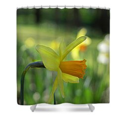Daffodil Side Profile Shower Curtain