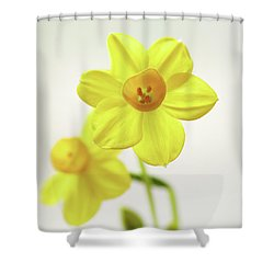 Daffodil Strong Shower Curtain