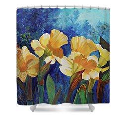 Daffodils Shower Curtain by Alika Kumar