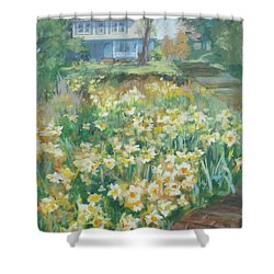Daffodils On The Corner Shower Curtain by Carol Strickland