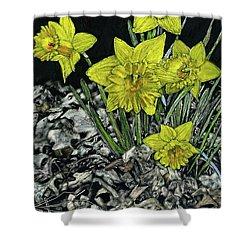 Daffodils Shower Curtain by Robert Goudreau