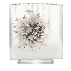 Dahlia 10 Shower Curtain by Simone Ochrym