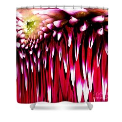 Dahlia Abstract Shower Curtain by Rose Santuci-Sofranko