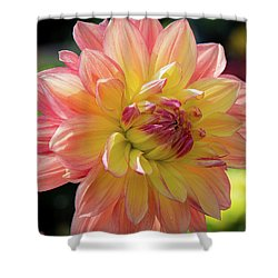 Dahlia In The Sunshine Shower Curtain