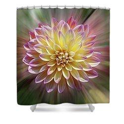 Dahlia Burst Shower Curtain by Judy Whitton
