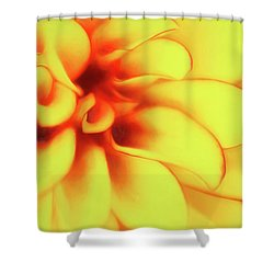 Dahlia Flower Abstract Shower Curtain