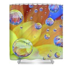 Dahlia Galaxy Two Shower Curtain