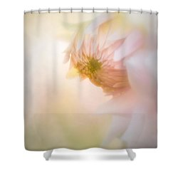 Dahlia In The Soft Morning Mist Shower Curtain