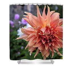 Dahlia - Inverness Shower Curtain by Amy Fearn