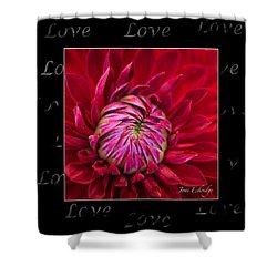 Dahlia Of Love Shower Curtain
