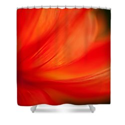 Dahlia On Fire Shower Curtain by Mike Reid