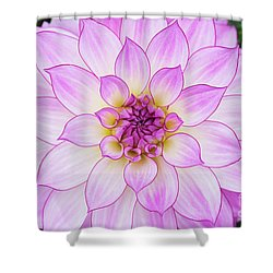 Dahlia Oriental Dream Shower Curtain