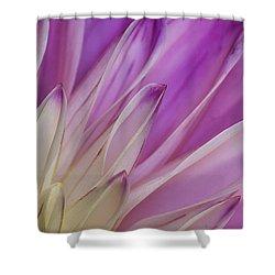 Dahlia Petals Shower Curtain
