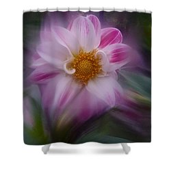Dahlia Aug 2016 No. 2 Shower Curtain by Richard Cummings