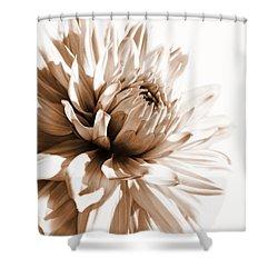Dahlia Sepial Flower Shower Curtain by Jennie Marie Schell