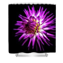 Dahlia Starburst Shower Curtain