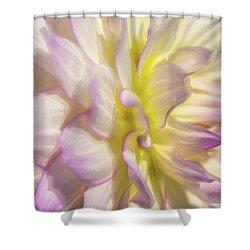 Dahlia Study 5 Painterly  Shower Curtain