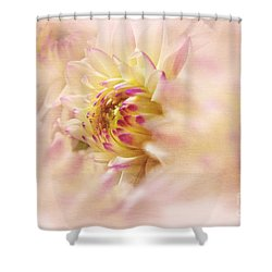 Dahlia2 Shower Curtain