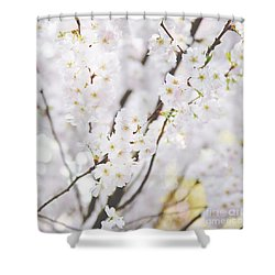 Dainty Shower Curtain