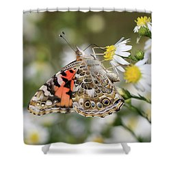 Dainty Sipping Shower Curtain