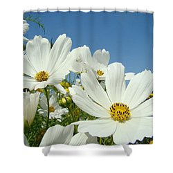 Daisies Flowers Art Prints White Daisy Flower Gardens Shower Curtain by Baslee Troutman