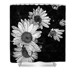 Daisies In Black And White - Photography Shower Curtain