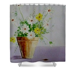 Shower Curtain featuring the painting Daisies In Pot by Jamie Frier
