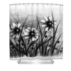Daisies Shower Curtain by Rachel Christine Nowicki