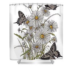 Daisy At Your Feet Shower Curtain by Stanza Widen
