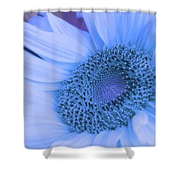 Daisy Blue Shower Curtain by Marie Leslie