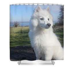 Shower Curtain featuring the photograph Daisy by David Grant