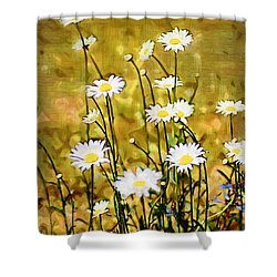 Shower Curtain featuring the photograph Daisy Field by Donna Bentley