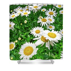 Daisy Garden Shower Curtain