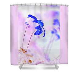 Daisy In Blue Shower Curtain by Kaye Menner