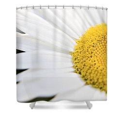 Daisy Shower Curtain by Marlo Horne