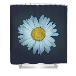 Shower Curtain featuring the photograph Daisy  by Shane Holsclaw