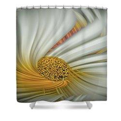 Daisy Swirl Shower Curtain