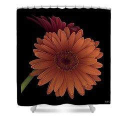 Daisy Tilt Shower Curtain by Heather Kirk