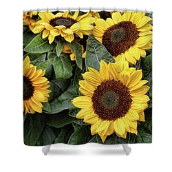 Daisy Yellow  Shower Curtain