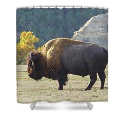 Dakota Badlands Majesty Shower Curtain