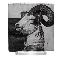 Dall Ram Shower Curtain